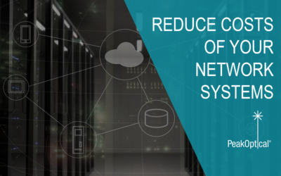 What do companies use to reduce the costs of their network systems?