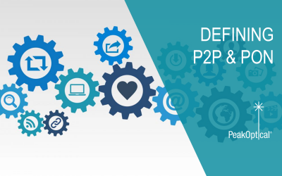 Point to Point (P2P) and Passive Optical Networking (PON)