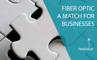Fiber optic – a match for all businesses
